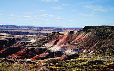 Photograph - Color At The Painted Desert - Arizona by rd Erickson
