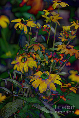 Photograph - Color Bump by Cathy Donohoue