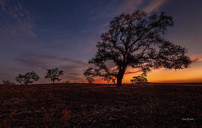 Photograph - Color Change At First Light by Tim Bryan