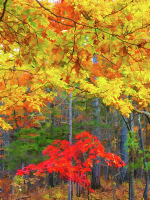 Color Change Of Autumn Leave 2 Print by Lanjee Chee