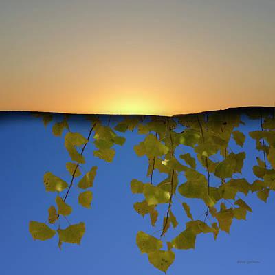 Photograph - Color Composite I by David Gordon