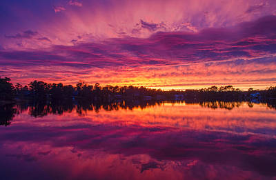 Photograph - Color Explosion Sunset by Beth Sawickie