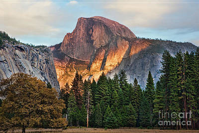 Photograph - Color Half Dome Yosemite National Park  by Chuck Kuhn