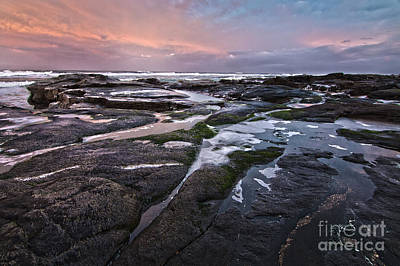 Photograph - Color In Yachats by Sonya Lang
