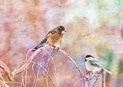 Tufted Titmouse Photograph - Color Me Happy Birds by Daphne Sampson