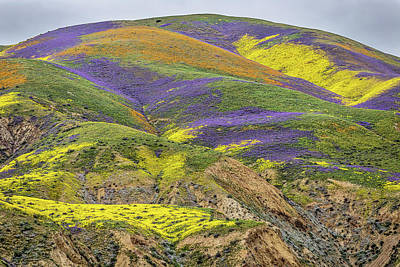 Photograph - Color Mountain II by Peter Tellone