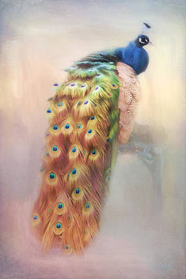 Photograph - Color Of My Love - Peacock Art by Jordan Blackstone
