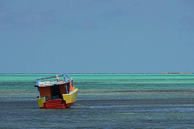 Wall Art - Photograph - Color On The Caribbean by Brandy Herren