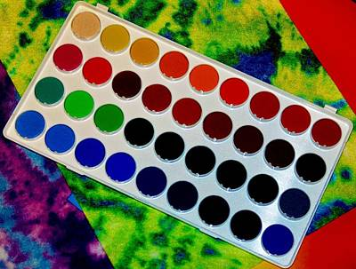 Photograph - Color Palette by Michelle McPhillips