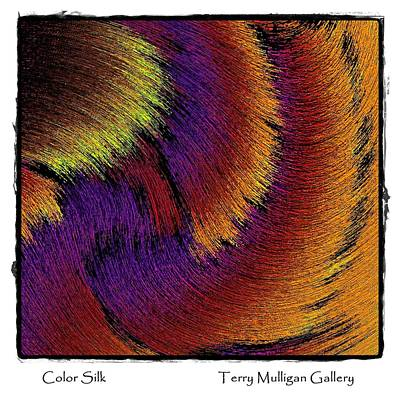 Color Silk Art Print by Terry Mulligan