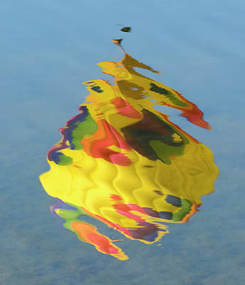 Photograph - Color Spill by Loree Johnson