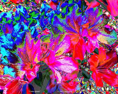Digital Art - Color Splash by Larry Beat