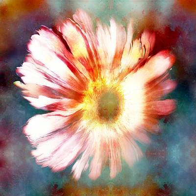 Color Splashed Daisy Art Print