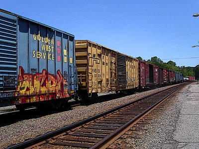 Photograph - Color Train by Anne Cameron Cutri