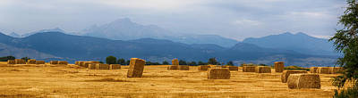 Photograph - Colorado Agriculture Farming Panorama View by James BO Insogna