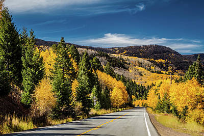 Photograph - Colorado - Aspens In The Fall - Horizontal by Ron Pate