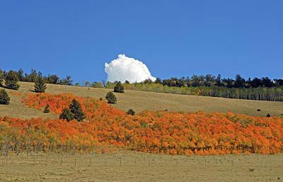 Photograph - Colorado Autumn 02 by Robert Meyers-Lussier