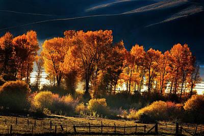 Aspen Photograph - Colorado Autumn Morning by Andrew Soundarajan