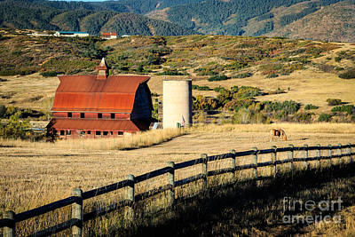 Photograph - Colorado Barn by Richard Smith