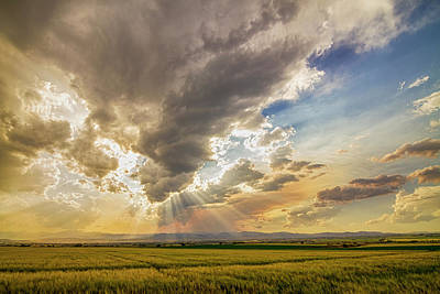 Photograph - Colorado Big Sky Beams Of Sunshine by James BO Insogna