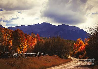 Dallas Western Painting - Colorado Blazing Autumn by Janice Rae Pariza