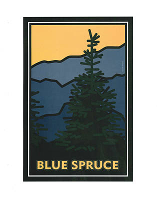 Painting - Colorado Blue Spruce by Carrie MaKenna