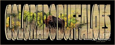 Colorado Buffaloes Name  9236 Art Print by Jack Schultz