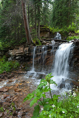 Photograph - Colorado Cascading Stream And Waterfall by Cascade Colors