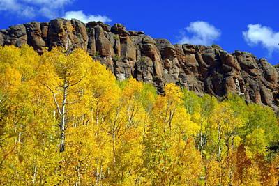 Colorado Fall 3 Print by Marty Koch