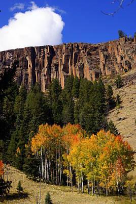 Colorado Fall 4 Art Print by Marty Koch