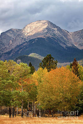 Photograph - Colorado Fall Color In The Mountains by Ronda Kimbrow