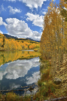Photograph - Colorado Fall Color Reflections by Ray Mathis