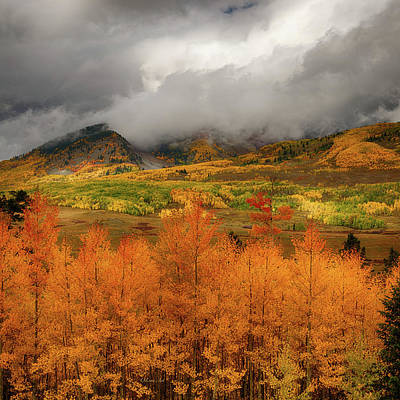 Art Print featuring the digital art Colorado Fall Colors  by OLena Art Brand