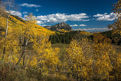 Photograph - Colorado Fall by Roy Kastning