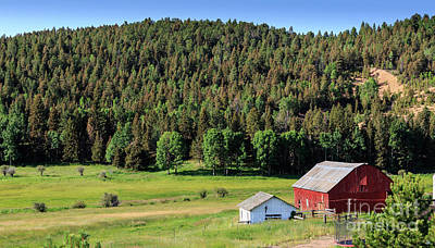 Photograph - Colorado Farm Scene by Richard Smith
