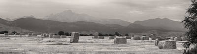 Hay Photograph - Colorado Farming Panorama View In Black And White by James BO  Insogna
