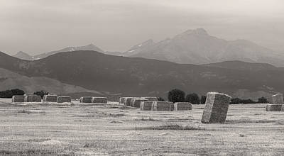 Photograph - Colorado Farming Panorama View In Black And White Pt 1 by James BO Insogna