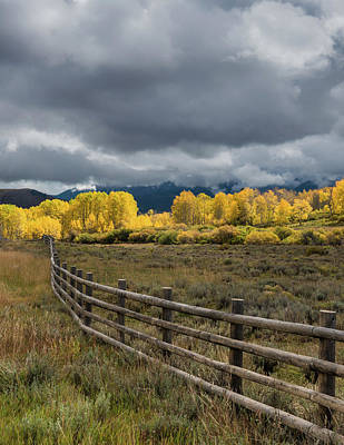 Colorado Fenceline Art Print by Joseph Smith