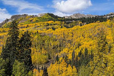 Colorado Golden Autumn Bliss Art Print by James BO  Insogna