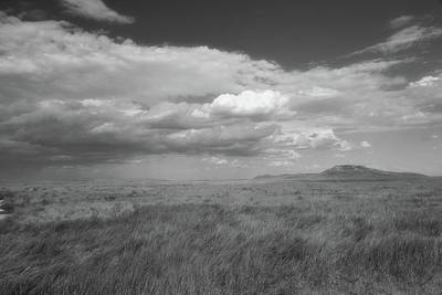 Photograph - Colorado Grassland by Charles Owens