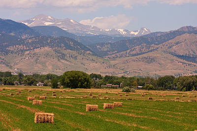 Hay Photograph - Colorado Hay  by James BO  Insogna