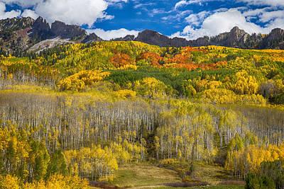 October Photograph - Colorful Colorado Kebler Pass Fall Foliage  by James BO  Insogna