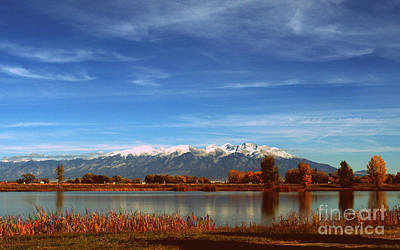 Photograph - Colorado Landscape by Anjanette Douglas