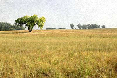 Colorado Landscape Original by James Steele