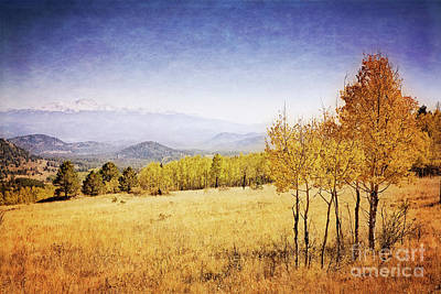 Photograph - Colorado Landscape by Scott Kemper