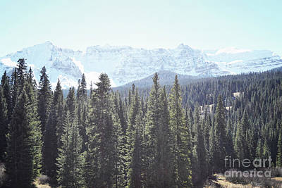 Photograph - Colorado Majestic Snow Capped Mountains Forest by Andrea Hazel Ihlefeld