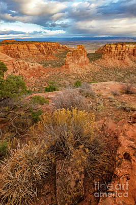 Photograph - Colorado National Monument, Grand Junction, Colorado by Ronda Kimbrow