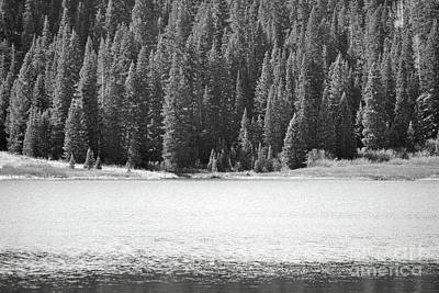 Photograph - Colorado Pine Forest Lake by Andrea Hazel Ihlefeld