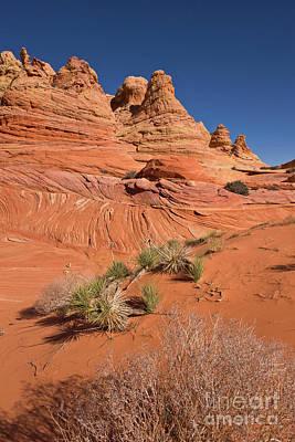 Photograph - Colorado Plateau Sandstone by Yva Momatiuk John Eastcott