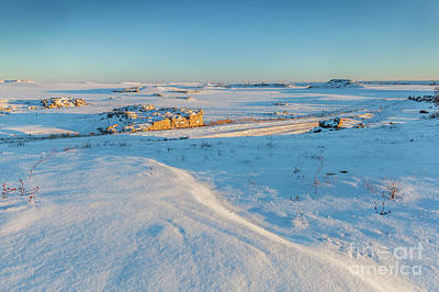 Photograph - Colorado Prairie In Winter by Marek Uliasz